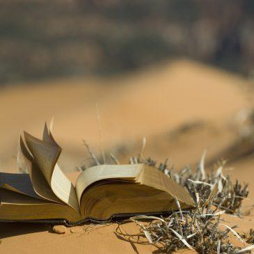 KONKURS BIBLIJNY: Finał XV edycji Konkursu Biblijnego za nami